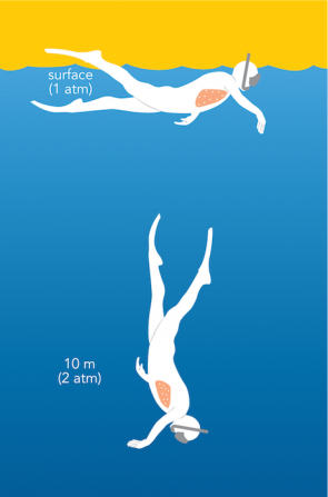 hydrostatic pressure diving