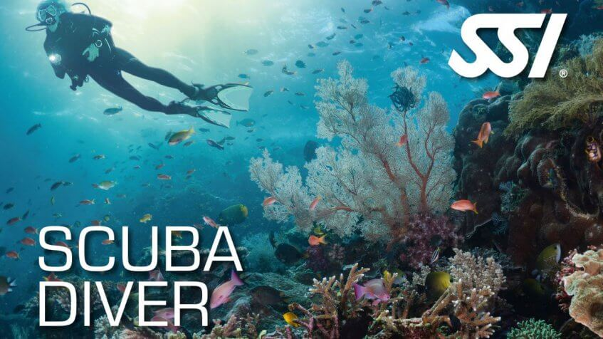 SSI scuba diver certification