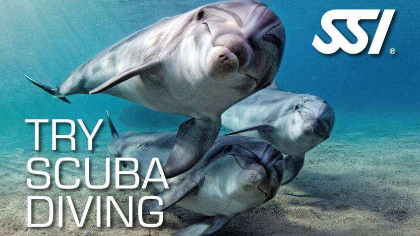 SSI try scuba diving certification
