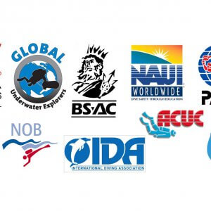 diving organisations
