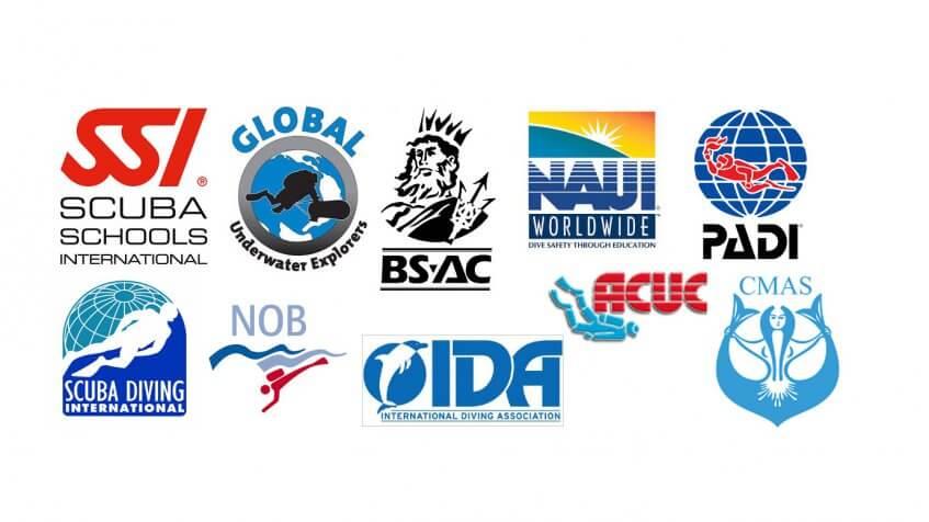 diving organisations