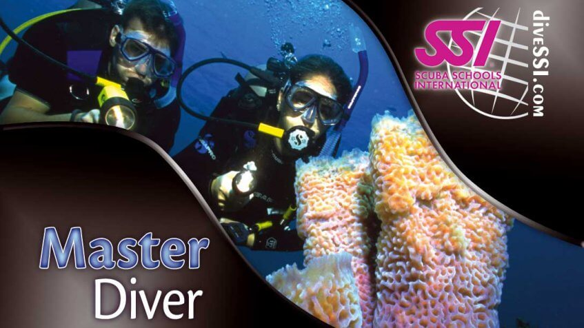 SSI master diver certification