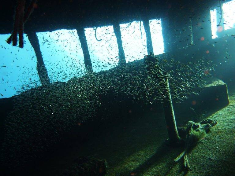 Wreck Diving at Brother Islands